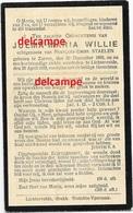 Doodsprentje Julma Willie Zarren 1869en Overleden Te Lichtervelde 1919 Staelen Francois Diksmuide Werken Kortemark - Images Religieuses