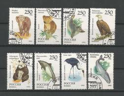 Russia 1993 Fauna Y.T. 6040/6047 (0) - 1992-.... Fédération