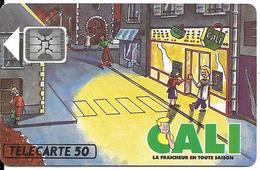 CARTE-PUCE-PRIVEE-PUBLIC- 50U-EN488-SC4-12/92-CALI-R°Mat-V°Ge 44384-Utilisé-TBE-LUXE - France