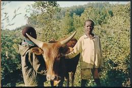 °°° 18895 - PAYSAGE DU BURUNDI , AFRIQUE CENTRALE - 1974 °°° - Burundi