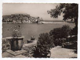 COLLIOURE -- 1952 -- Vue Générale De L'Hôtel De La Balette................à Saisir - Collioure