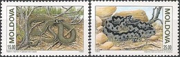 LUXEMBOURG - WWF: SNAKES 1993  - MNH - W.W.F.
