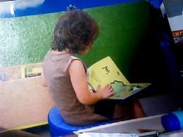 MODENA BIBLIOTECA DELFINI 2012  STAMP NILLA PIZZI B ISOLATO  VB2019 HL5219 - Modena