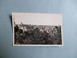 MEUNG SUR LOIRE  -  45  -  Vue Générale  -  Loiret - France