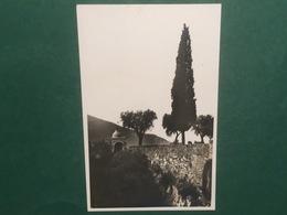 Cartolina Subiaco - Santuario Del S. Speco - 1920 Ca. - Roma