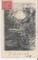 MEXIQUE. CPA Voyagée En 1906 Un Camino En El Monte (bords Marqués Voir Scan) - México