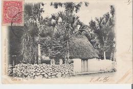 MEXIQUE - TIKUL. CPA Voyagée En 1905  Casa En Tikul (coin Bas Gauche Marqué Voir Scan) - México