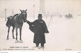 75008. N° 103872 .paris .cocher Desempare Ramenant Son Cheval A La Bride  . - France