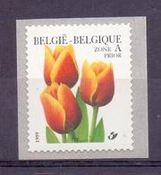 Belgie - 1999 - OBP - ** 2855 -  Rolzegel 92  - Tulp -  Bloemen -  Andre Buzin - Coil Stamps