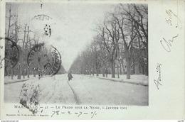 13 .n°  106897 .  Marseille .le Prado Sous La Neige 6 Janvier 1901 . - Castellane, Prado, Menpenti, Rouet
