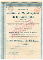 Titre Ancien - Compagnie Minière Et Métallurgique De La Haute Italie (Doralys) - Sté Anonyme  - Titre De 1901 -N° 2917 - Chemin De Fer & Tramway