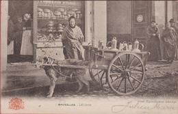 Brussel Bruxelles Folklore Hondenkar Attelage De Chien Voiture Charrette Laitiere Melkmeisje (In Zeer Goede Staat) - Chiens