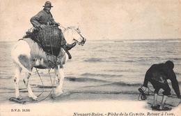 Nieuport - Pêche De La Crevette, Retour à L'eau 1905 Avec Cachet à L'arrière - Nieuwpoort