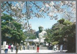 CP Japon, Le Grand Bouddha De Kamakura à L'époque Des Cerisiers En Fleurs . Non Circulé - Budismo