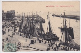 76 LE TREPORT Les Bateaux De Pêche ,voiliers à Quai Terre Neuvas - Le Treport