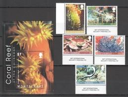 G1542 MONTSERRAT FISH & MARINE LIFE FAUNA CORAL REEF OF THE CARIBBEAN BL+SET MNH - Mundo Aquatico