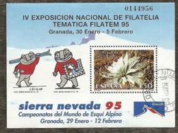 1995-ED. 3340 H.B.-FILATEM'95-SIERRA NEVADA-USADO- - 1931-Hoy: 2ª República - ... Juan Carlos I
