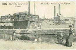 Selzaete , Suikerfabriek Wittouck - Zelzate