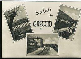 RC91 SALUTI DA GRECCIO ( STAZIONE FERROVIARIA CON TRENO ) - Altre Città