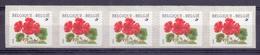 Belgie - 1999 - OBP - ** 2854 -  Rolzegel 91 - Strook Van 5 - Geranium -  Bloemen -  Andre Buzin - Coil Stamps