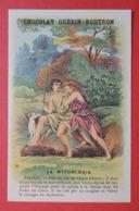 CHROMO.  Guerin-Boutron. Baster & Vieillemard. La  Mythologie. N° 56.  ADONIS.  Forêt Du Liban - Cromo