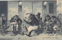 La Terrasse Du Café - Carte Gauffrée - 1905            (A-189-191009) - Monkeys