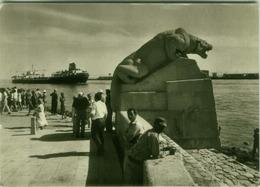 EGYPT - SUEZ CANAL - FOTO JOVAN DEZART - CZECH EDITION - 1950s (BG7906) - Suez