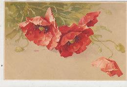 Mohnblumen - Sign. C.Klein         (A-189-191009) - Klein, Catharina