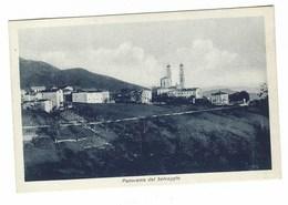 4042 - PANORAMA DEL SELVAGGIO GIAVENO TORINO SANTUARIO N S DI LOURDES  1940 CIRCA - Italia
