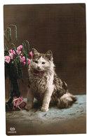 Chat -cat - Katze-   Poes En Bloemen - Chats