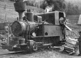 Dampflok R III C No.246,von Steinhaus Am Semmering Nach Rettenegg, Ungelaufen - Trains