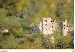 CPSM/gf (82) ESPINAS.  Château De Cas. ..I 260 - Francia