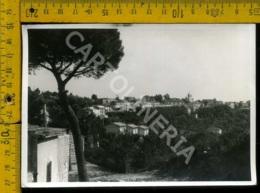 Avellino Villanova Del Battista (carta Sottile) - Avellino
