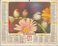 ALMANACH DES POSTES  1977 ( CALENDRIER )  OISEAUX - Grand Format : 1971-80