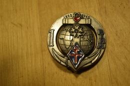 Rare Insigne 1 Er RIMA - Armée De Terre