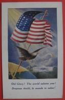 Old Glory! The World Salutes You - Militaria Guerre 1914-1918 Aigle DRAPEAU ETOILE, LE MONDE TE SALUE - War 1914-18
