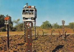 Madagascar - Tombeaux Dans Le Sud (Mahafaly) - Cimetière - CAD - Madagascar