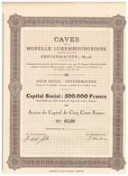 Titre Ancien - Caves De La Moselle Luxembourgeoise - Société Anonyme - Grevenmacher-sur-Moselle - Titre De 1916 - - Tourisme