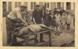 Sur La Place De CONDE Sur HUISNE (Orne) Encore Une Victime Cochon RV - Otros Municipios