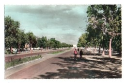 Burkina Faso 041, Ouagadougou, Estel 19012, Les Champs-Elysées - Burkina Faso