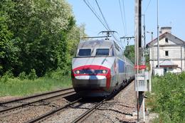 Mouthiers Sur Boëme (16 - France)  22/05/2010 - TGV Réseau Tricourant N°4511 - France