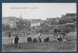 SAINT BENOIT DU SAULT - Les Jardins - Andere Gemeenten
