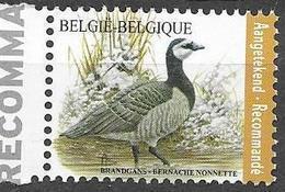 BELGIUM, 2020, MNH, BIRDS, BARANCLE GOOSE, REGISTERED POSTAGE STAMP, 1v - Pájaros