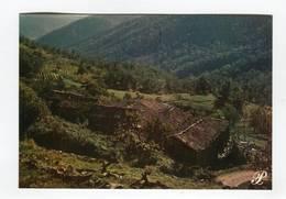 C.P °_ 48-Hameau Typique Des Cévennes-1978 - Autres Communes