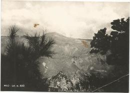 V4351 Milo (Catania) - Panorama Dell'Etna Visto Da Monte Fontana / Viaggiata 1956 - Italia
