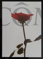 LANCOME Parfum Cosmetique Carte Postale - Perfume Cards