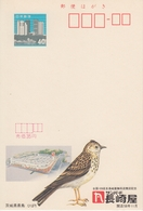 Japan - Opening Of A Department Store In Ibaraki Prefecture, Lark (bird) - Echo Postal Stationery Card Unused - Passereaux