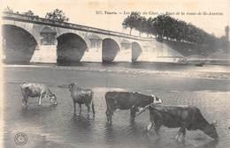 20-2900 : TOURS. EDITION DU GRAND-BAZAR. BORDS DU CHER. PONT DE LA ROUTE DE SAINT-AVERTIN - Tours