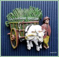 Magnet LA RÉUNION LONTAN - Charrette Bœuf, Cannes - Tourisme