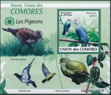 D - [39151]TB//**/Mnh-Comores 2009 - BL1685, Faune, Les Oiseaux, Les Colombidés, Pigeons & Columbiformes. - Pigeons & Columbiformes
